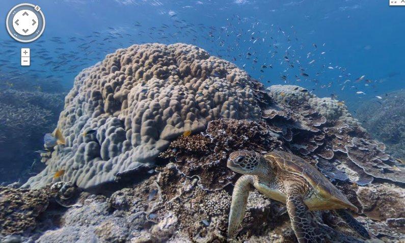 Underwater sea life using Google Maps
