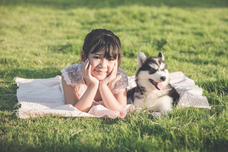 The number of pets is more than the children in Japan