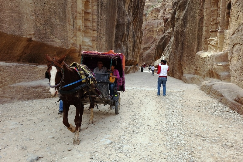 Petra is an important junction for the silk trade