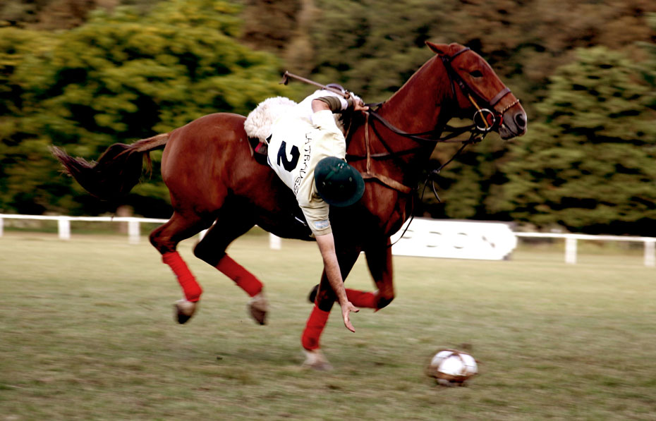 Pato is a national sport of Argentina which played on horseback.