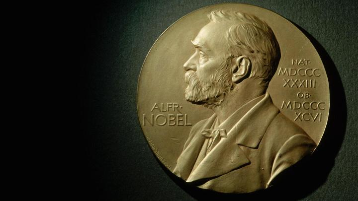 Poles have won a total of 17 Nobel prizes more than Japan, India, China or Australia.