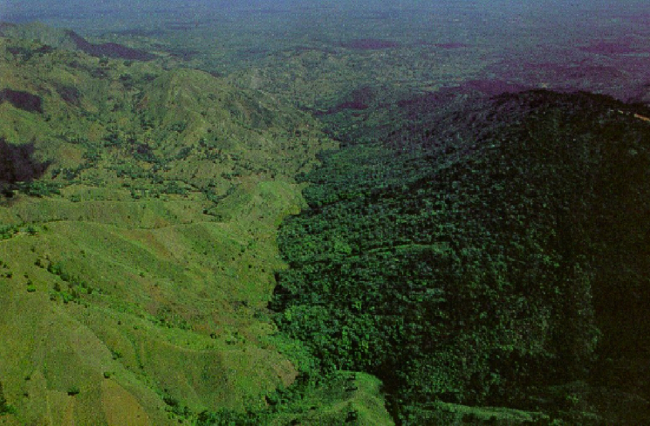 The Dominican Republic shares a single border from Haiti to the west.