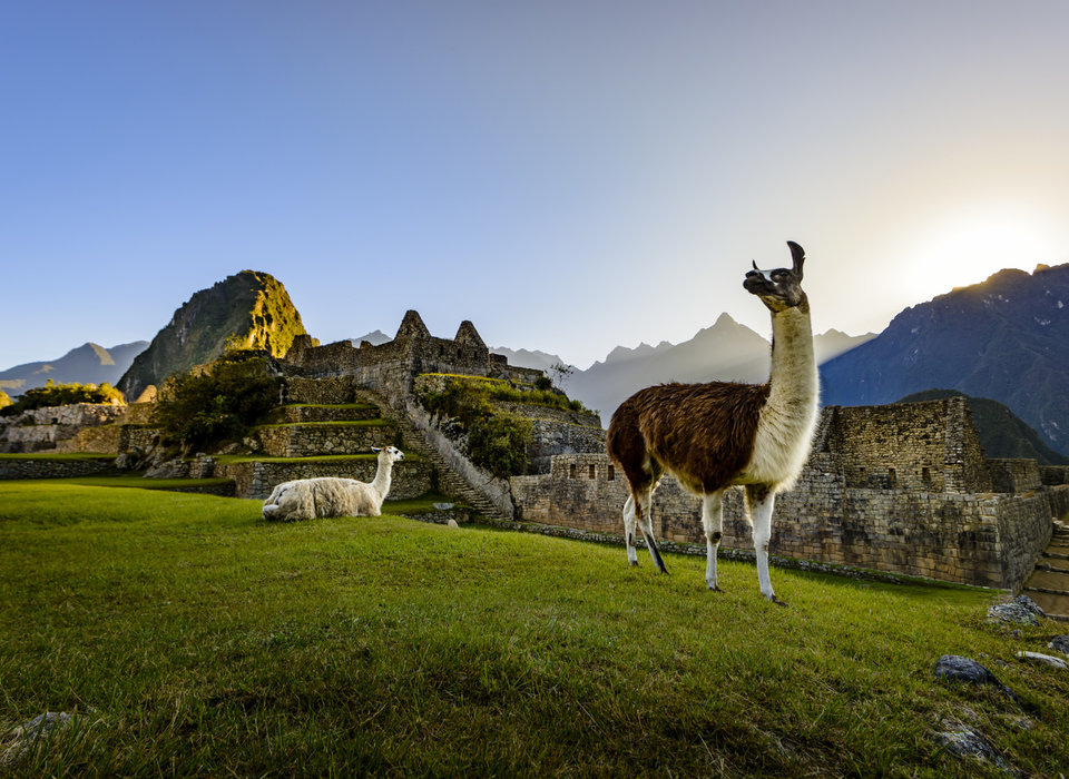 Inca civilization, in the Andes Mountains, believed the cocaine was a gift from the gods.