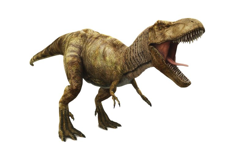 It is believed that dinosaurs lived on Earth until around 65 million years ago.