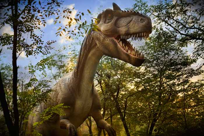 Meat-eating dinosaurs are known as theropods.