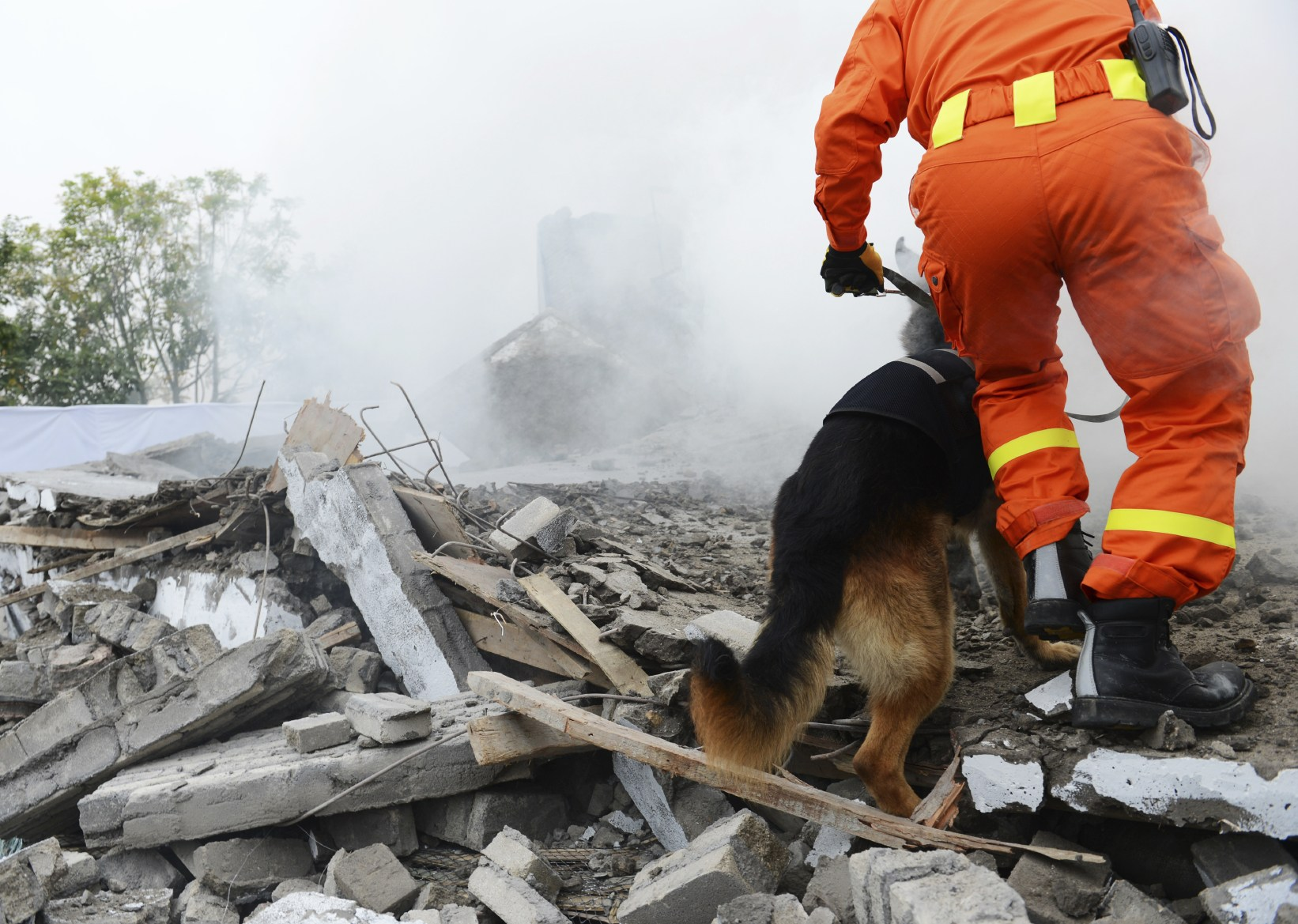 The earthquake in Japan had a magnitude of 9.0 and killed over 15000 people on March 11, 2011.