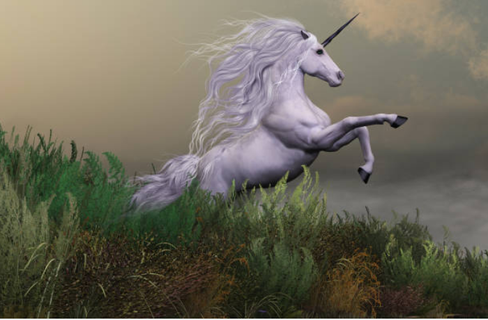 In the Middle Ages a unicorn became seen as a symbol of purity and grace.