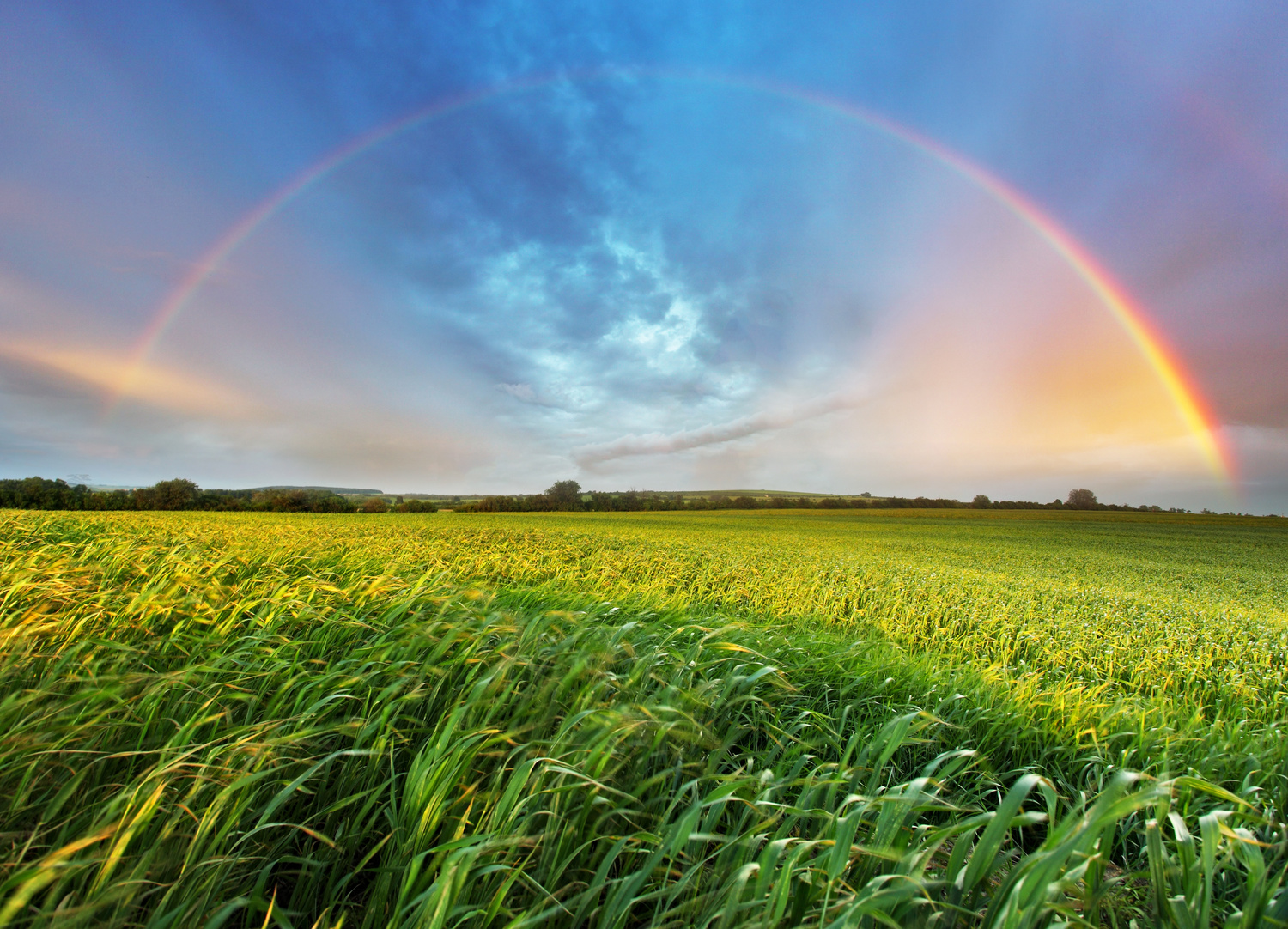 A person standing next to you is standing in a slightly different spot and sees the rainbow in a slightly different because the person next to you sees different raindrops.