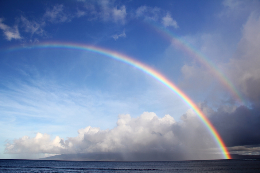 Rainbows can be seen not just in rain but also mist, spray, fog, and dew.