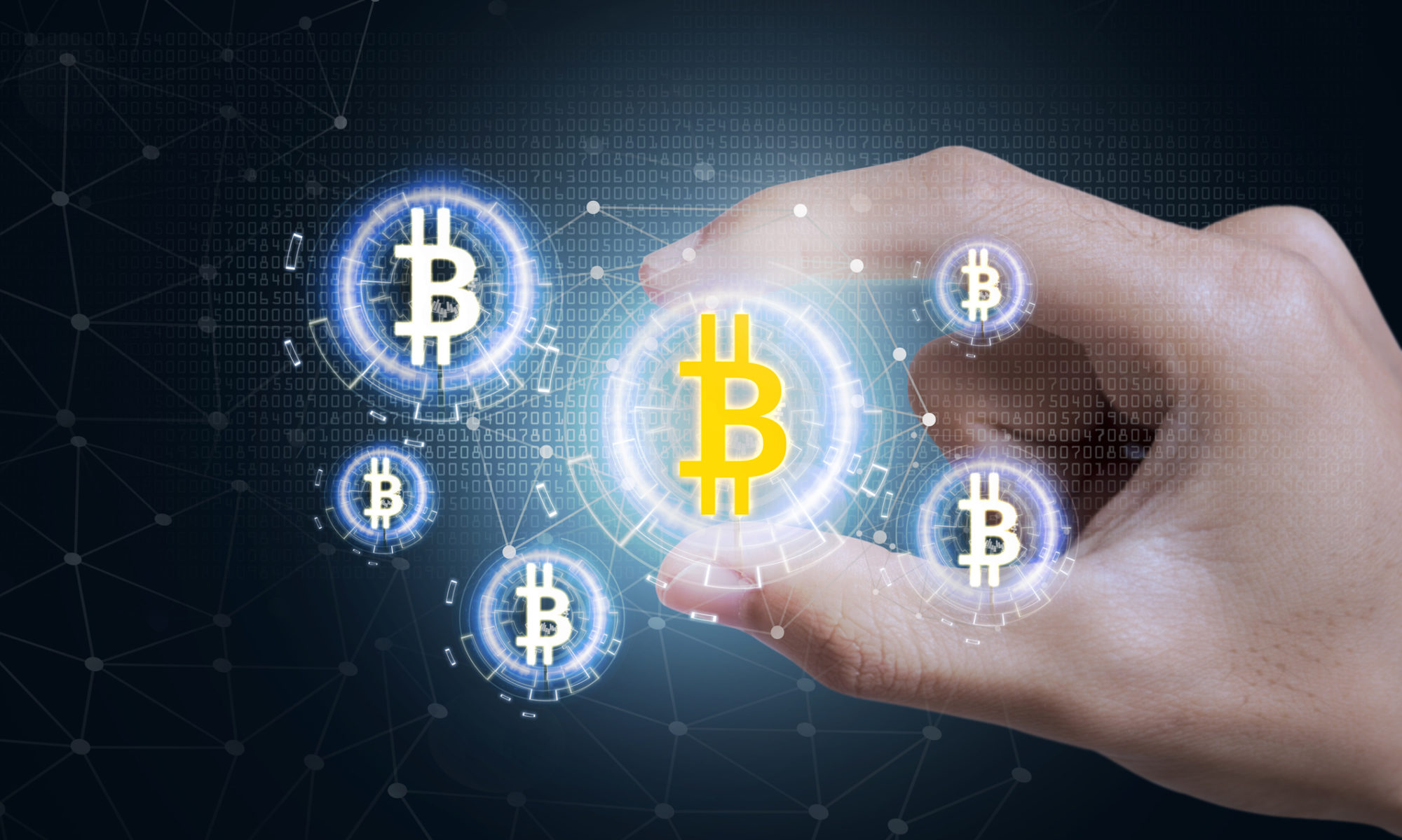 Bitcoins are held in digital wallets.