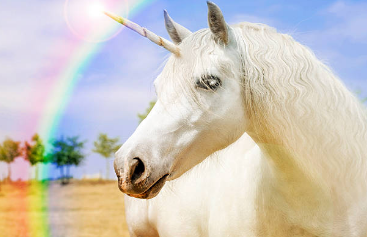 Unicorns can be any color, from jet-black and brown to dazzling gold.