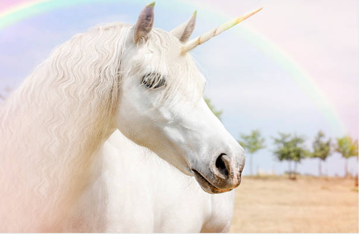 Unicorns live in groups of four or five that make up a joyous family.