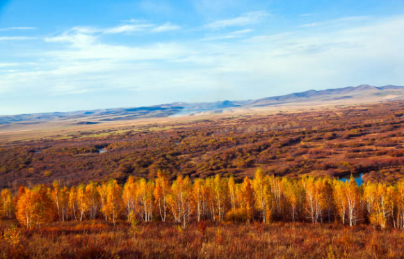 Bogd Khan Ull National Park is the world's oldest national park located in Mongolia.