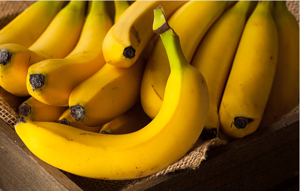 Bananas are the favorite snack of distance runners.