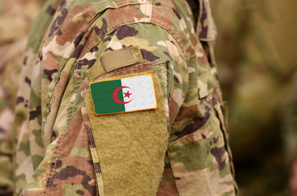 Algeria has one of the largest militaries in Africa and the largest defense budget on the continent.