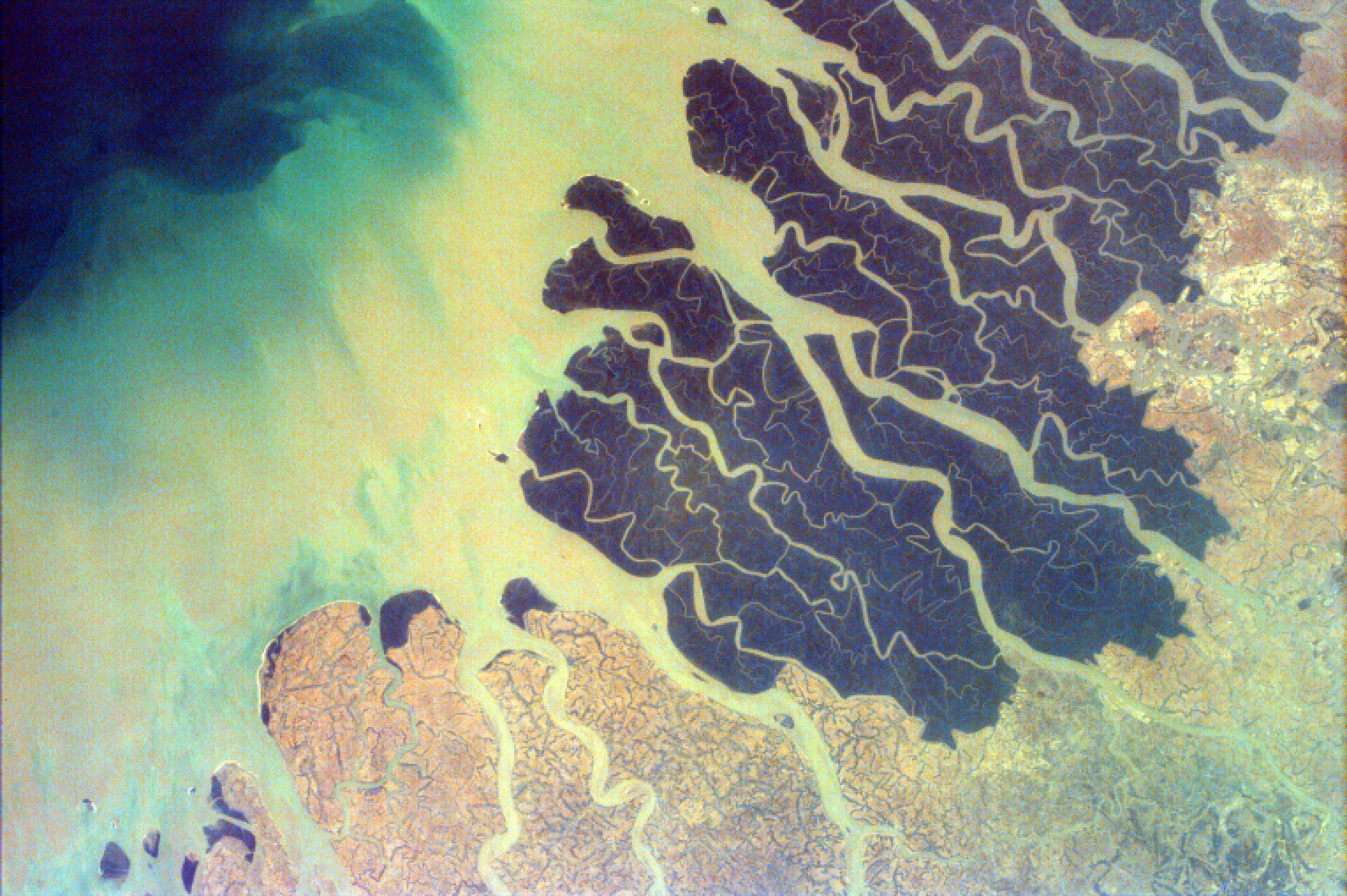 The Sundarbans Delta is the largest river delta in the world