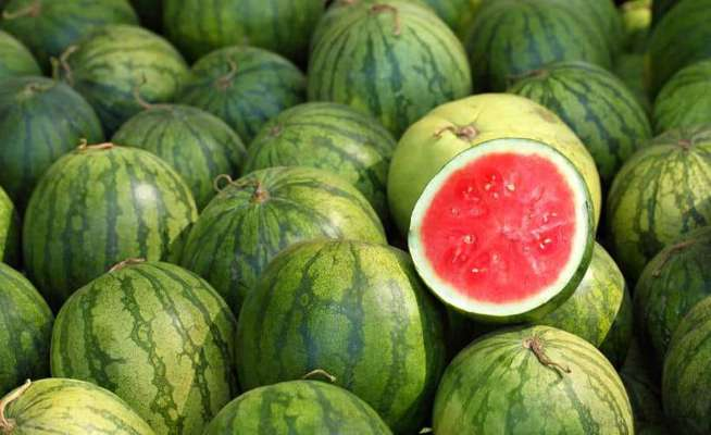 China is the leading producers of watermelons.