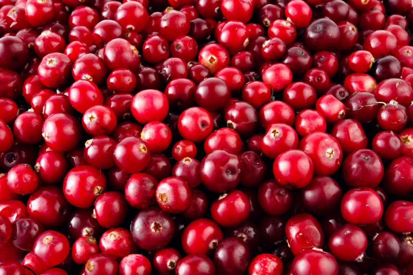 Cranberries have approximately 90% water.