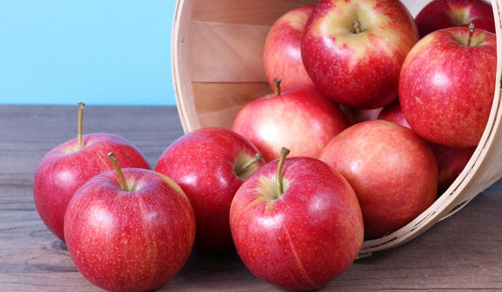 It takes two pounds of apples to make one nine-inch pie.