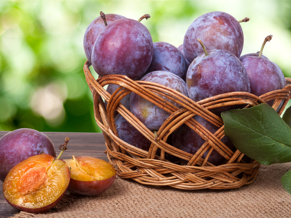 China is the world's leading producer of plums accounting.